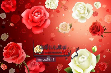 دانلود لايه باز گل رز